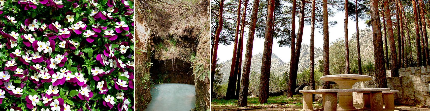 Aguas Vivas paisajes
